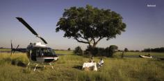 Belmond Safaris helicopter dining  INTRODUCING TTFN TRAVEL It's our experience and wisdom blended with your inspiration to travel that turns journeys into memories, geography into photo albums and travel magazines and exotic locations into the fabric of your life. Over the years we have come to understand that behind every great journey our clients enjoy sits a select group of experienced and enthusiastic travel consultants pooling their collective wisdom and experience to make your journey a success. With over 60 years of global travel experience our team can offer extensive tailored travel advice, solutions and corporate travel management.   28 Churchill Ave, Subiaco, W.A 6008 Phone: +61 (08) 6382 5000 Email: travel@ttfn.com.au
